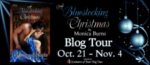 Bluestocking Christmas Banner