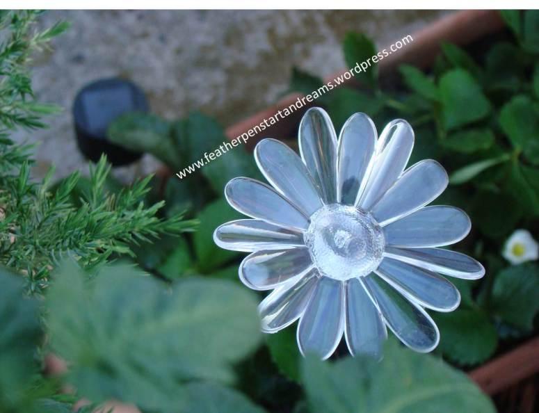 June Flowers6